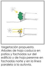 vegetacion-fachadas-sur